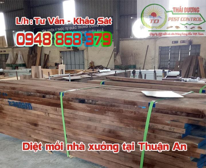 Dự án chống mối nhà xưởng tại Thuận An